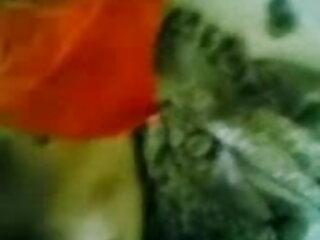 হোটেল, www xx video বাংলা কালো, স্ত্রী, প্রতারনা